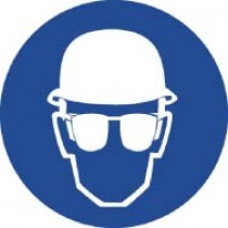 Wear Head & Eye Protection ISO Label (#ISO210AP)