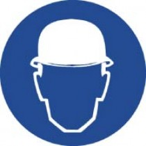 Wear Head Protection ISO Label (#ISO403AP)