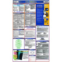 Florida Labor Law Poster (#LLP-FL)