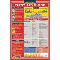 First Aid Guide Poster (#PST002)