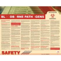 Bloodborne Pathogens Poster (#PST005)